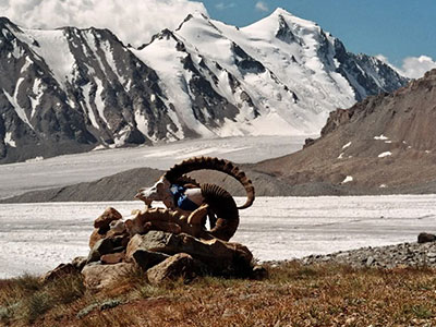 Discover Western and Northern Mongolia (15 days / 14 nights)
